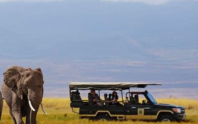 East Africa Safari Ideas for 2020